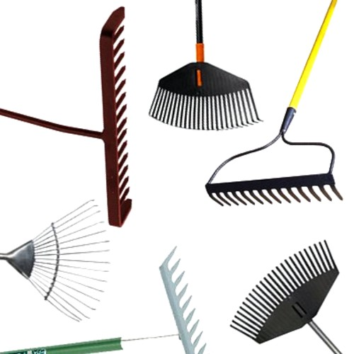 Best Rake For Pine Needles – Reviews & Guide