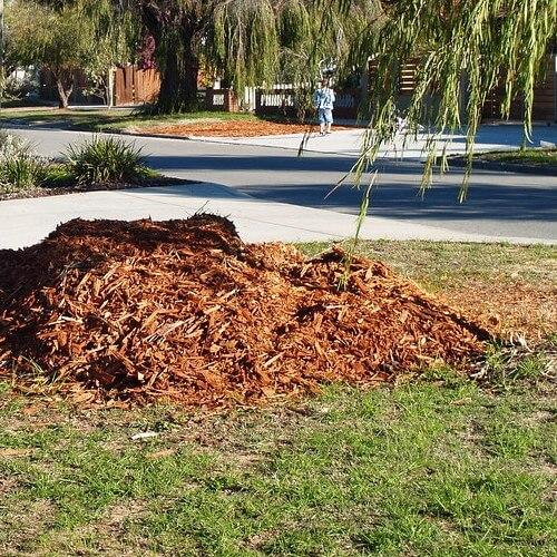 Best Mulch – Reviews & Guide