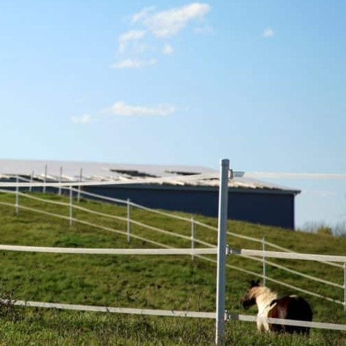 How to Electrify a Fence for Animal Protection
