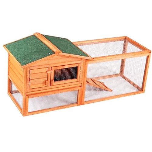 Confidence Pet 62 Chicken Coop review