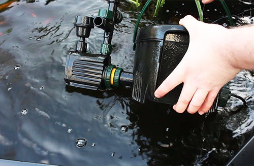 How to Clean Pond Filter: Biological Pond Filter