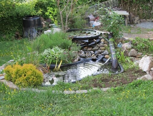 How to Repair the Pond Liner