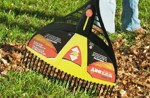 Best Way to Clean Up Leaves in Large Yard